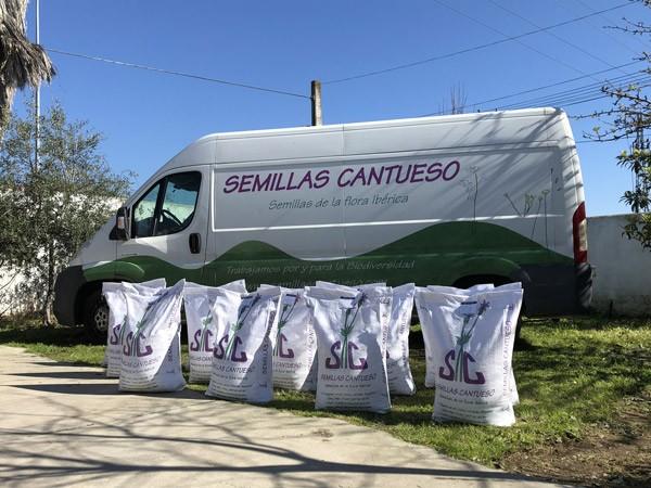 Donación semillas repoblación incendio Doñana - CANTUESO - Natural Seeds