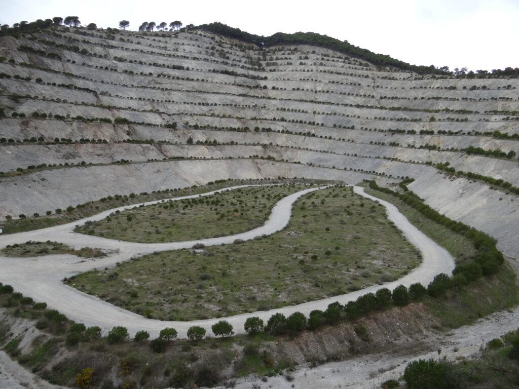 Cantera Alhaurín - CANTUESO - Natural Seeds