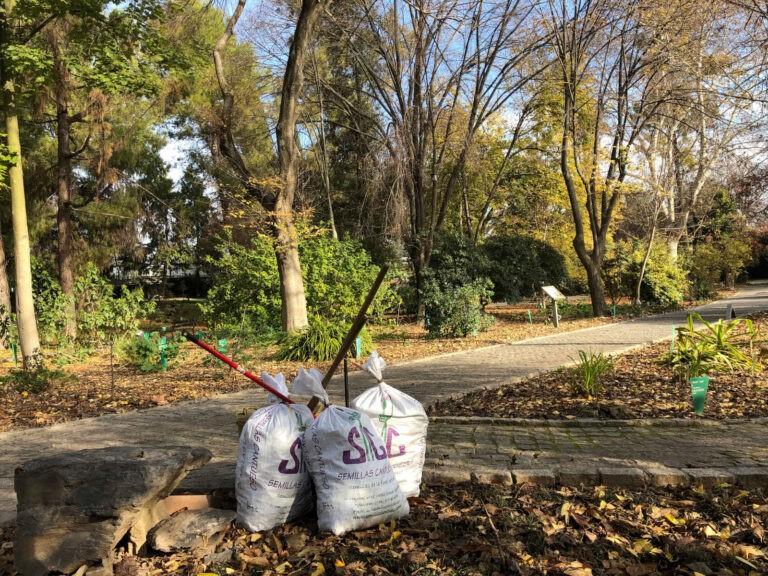 IMGEMA - Jardin Botánico - CANTUESO - Natural Seeds