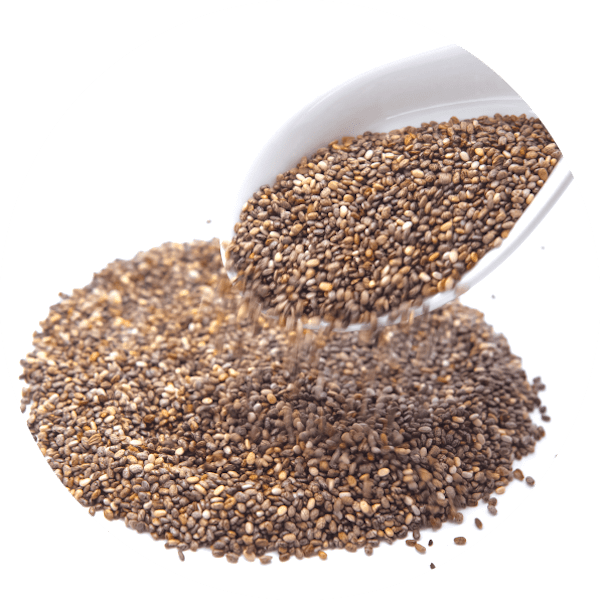 Servicios - CANTUESO - Natural Seeds